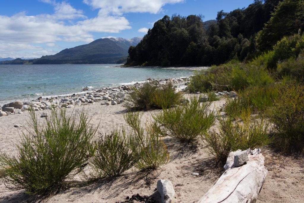 Une plage du lac Nahuel Huapi, près de Bariloche, Argentine