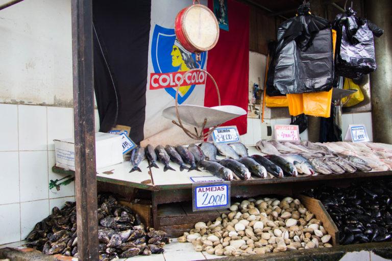 Étals du marché de Temuco