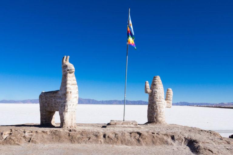 Tout est fait de sel aux abords des Salines Grandes : il y a même un lama et un cactus !