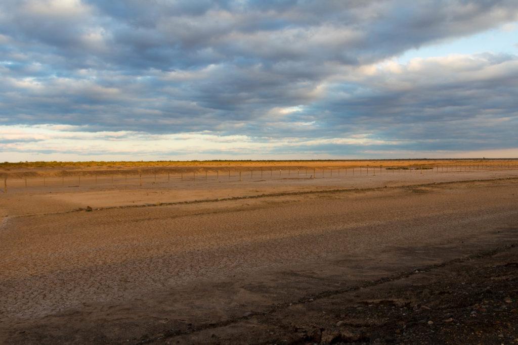 Paysage de pampa entre Mendoza et San Juan