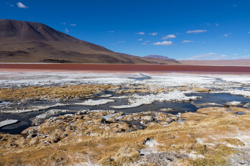 La rougeoyante Laguna Colorada, dans le Sud-Lipez