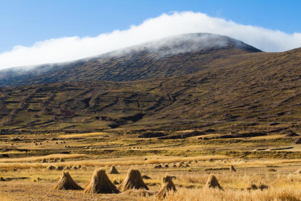 Les anciennes cultures en terrasse, sur le flanc des montagnes, au bord du lac Titicaca