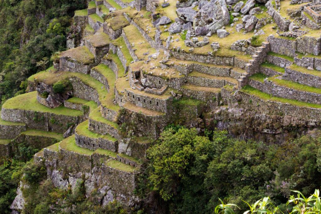 Machu Picchu - Détail des terrasses