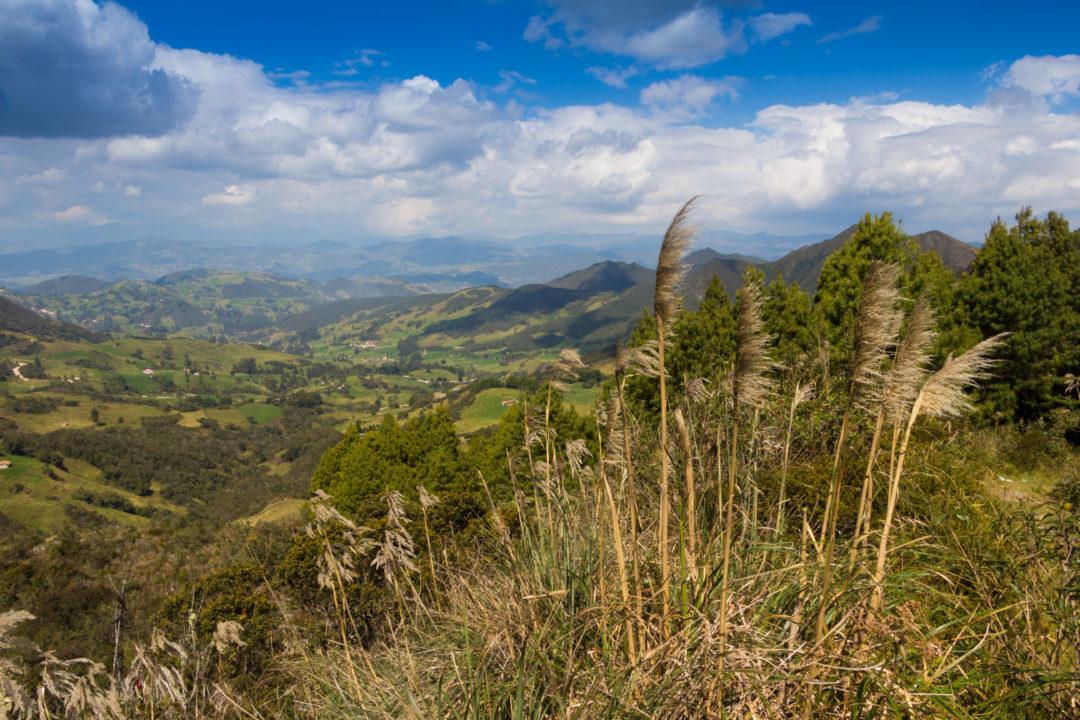 Entre Loja et Cuenca - Paysage