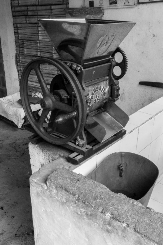 Finca Don Elias - Machine qui sépare les grains de la pulpe