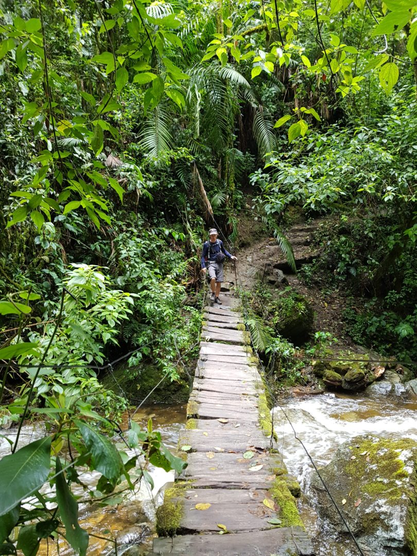 Vallée de Cocora - Simon sur le pont