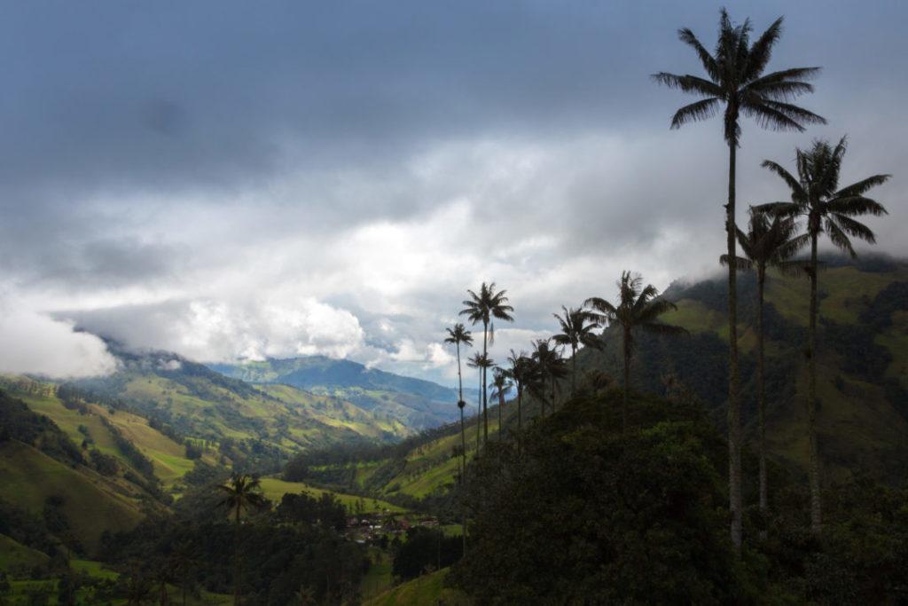 Vallée de Cocora - Vue sur la vallée