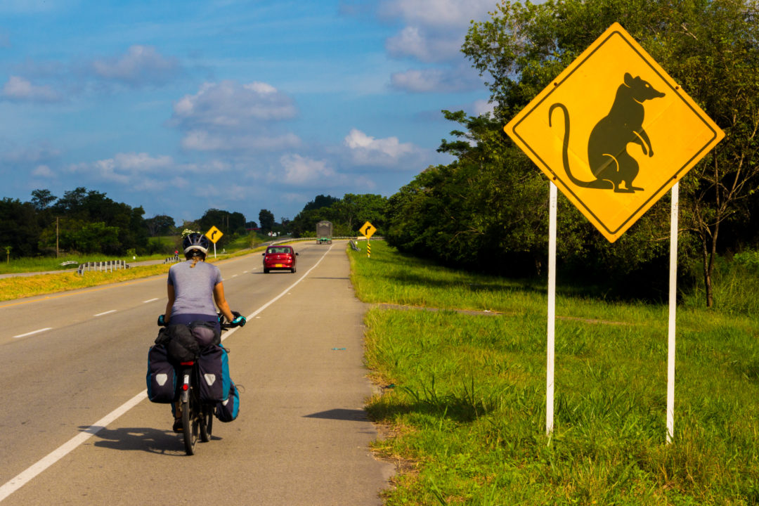 Entre Floridablanca et Mompox - Pauline