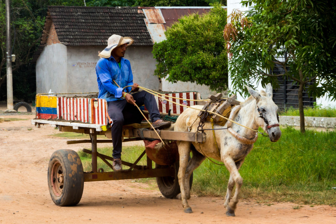 Mompox - Charette