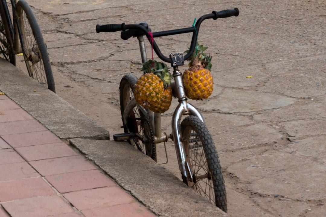 Mompox - Vélo aux ananas