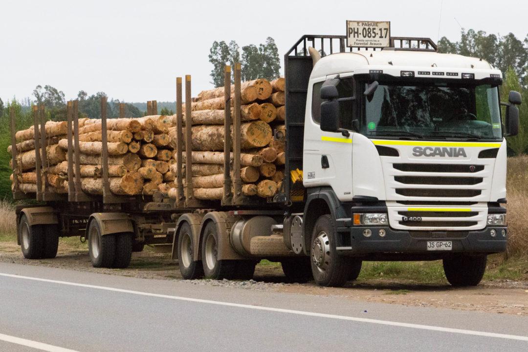 51_camion bois