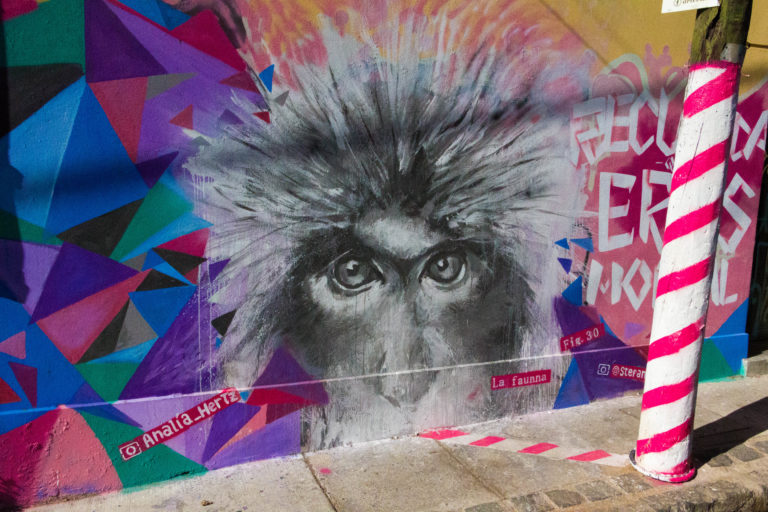 Mural de La Fauna, à Valparaiso