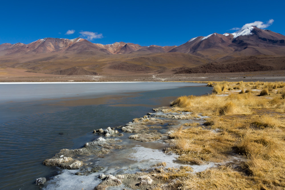 La Laguna Canapa, dans la région du Sud-Lipez, Bolivie
