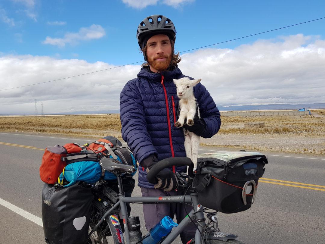 Simon et le petit agneau