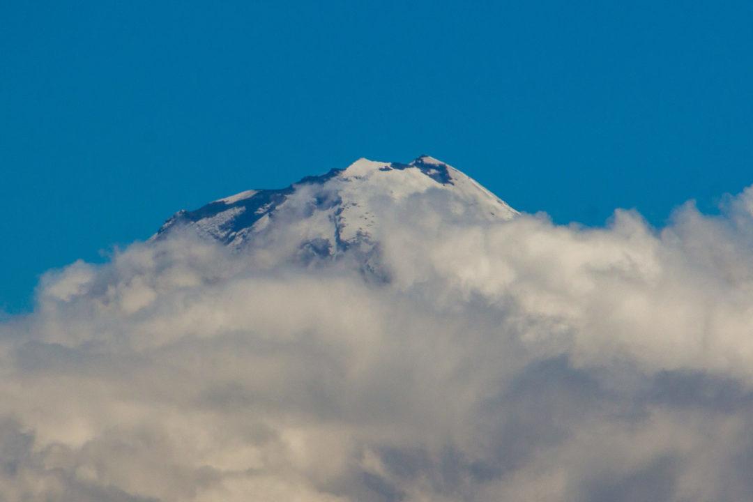 Chimborazo - Sommet