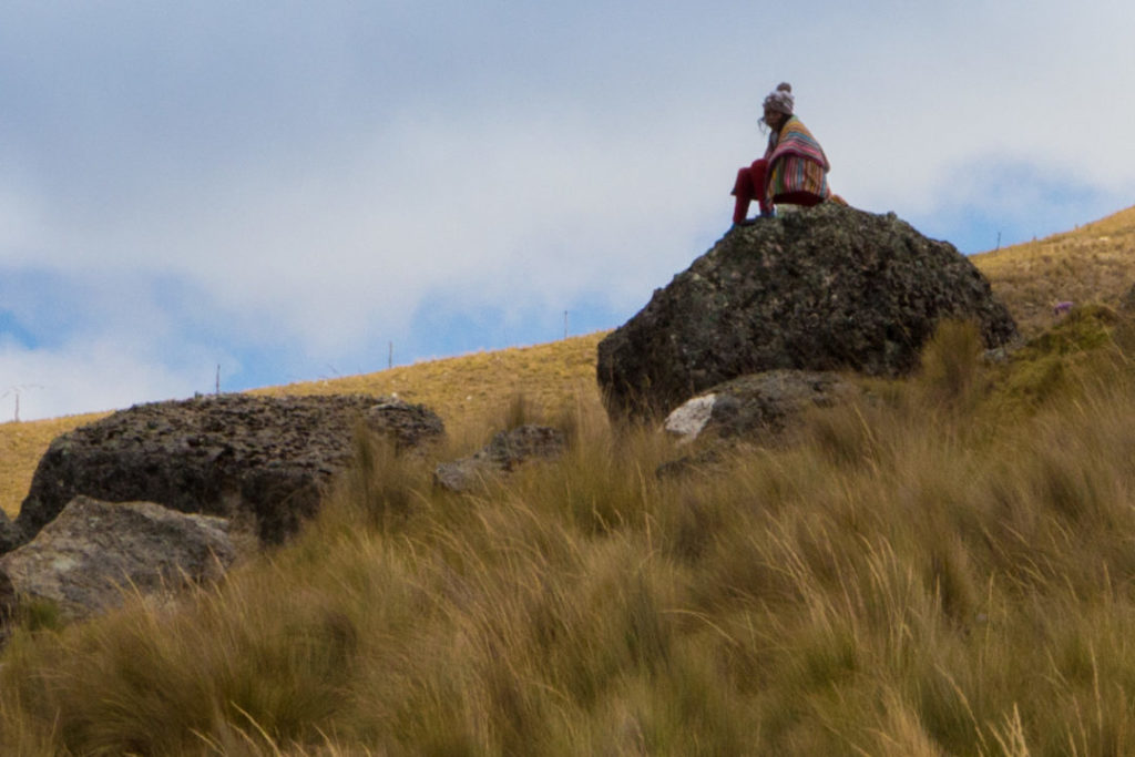 Cordillera Huayhuash - Enfant berger