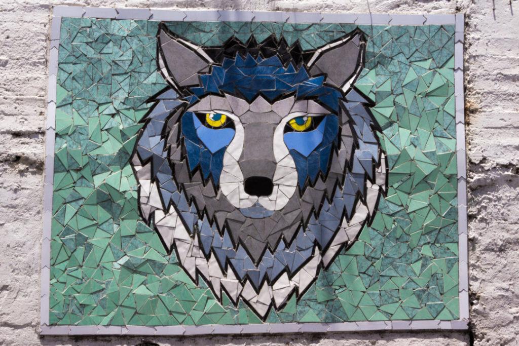 Entre Riobamba et Baños - Mosaique loup