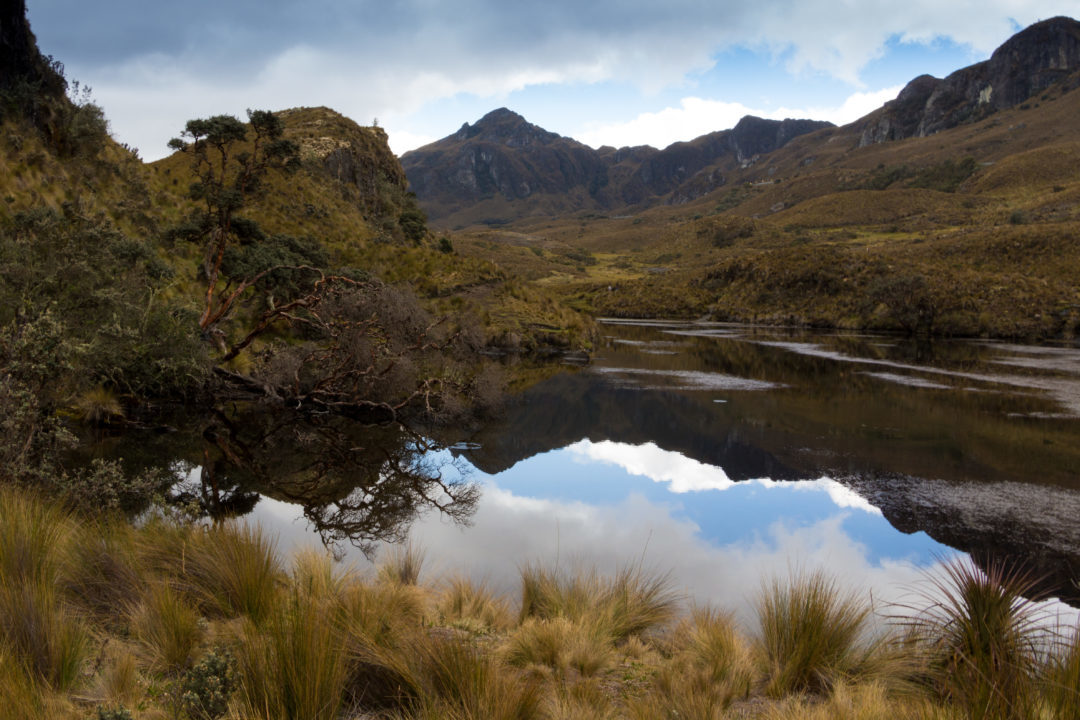 Parc National Las Cajas - Lagune