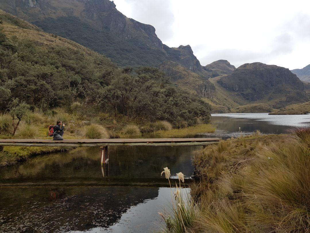 Parc National Las Cajas - Simon
