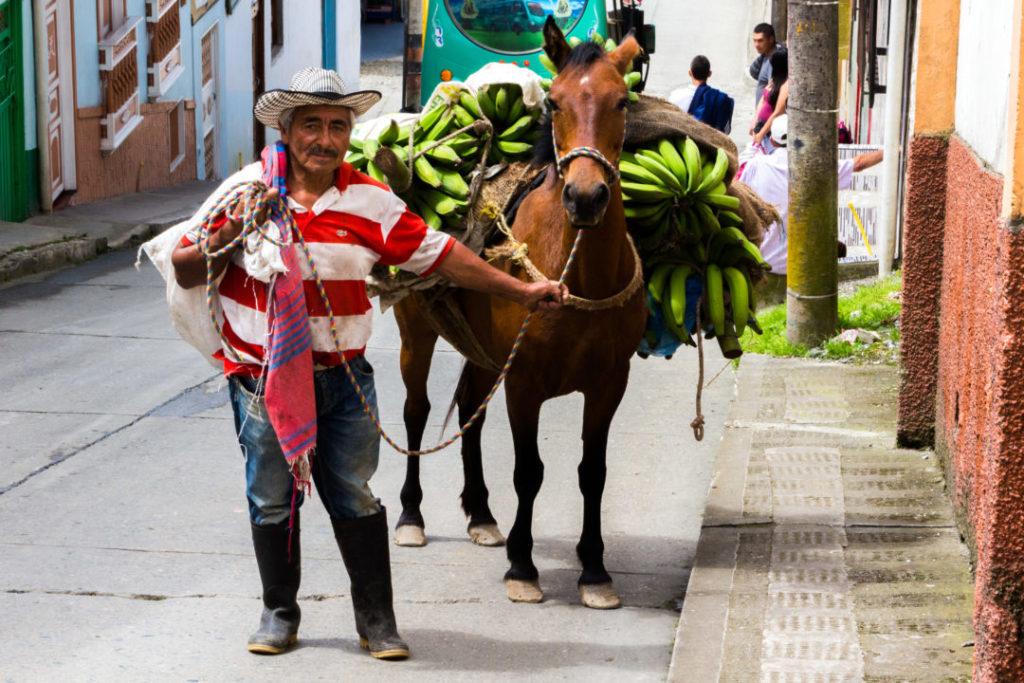 El Eje Cafetero - Un Colombien et son cheval