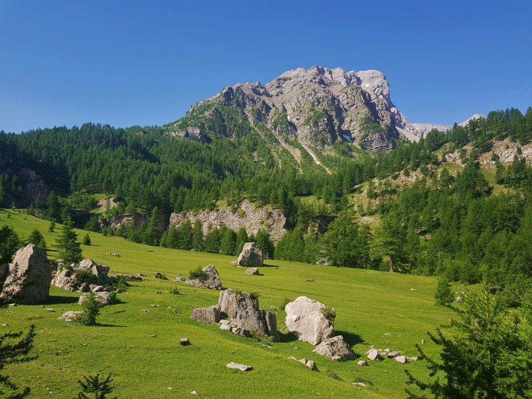 Col de la Cayolle - Paysage